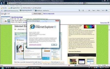 Microsoft Internet Explorer 8.0