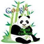 google-panda-excerpt