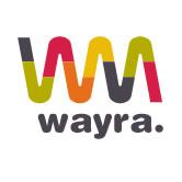 wayra-demoday