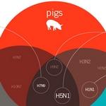 Diagrama de Venn muestra los diferentes tipos de gripe de animales que los humanos pueden contraer
