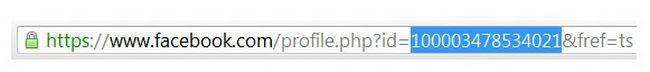 facebook-profile-url-numbers