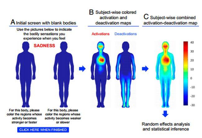 mapas-cuerpo-humano-emociones-ordenador