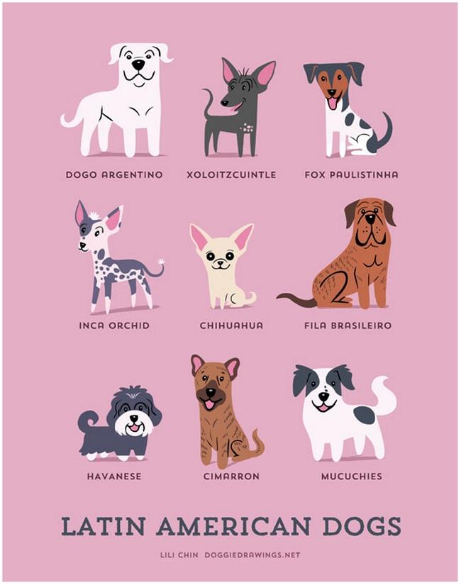 latin-american-dogs