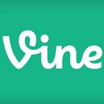 vine-excerpt