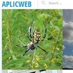 aplicweb-excerpt