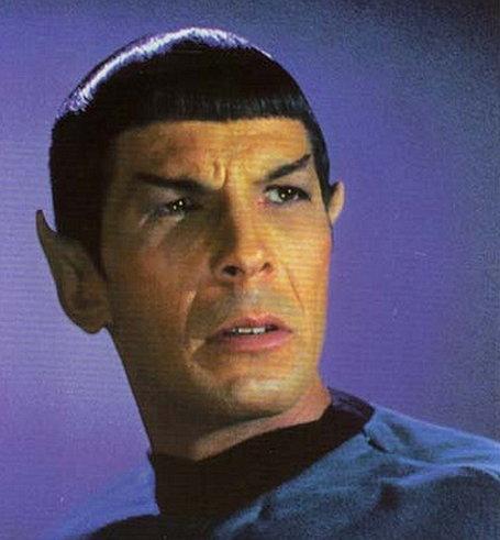 mr-spock-excerpt