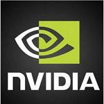 nvidia-excerpt