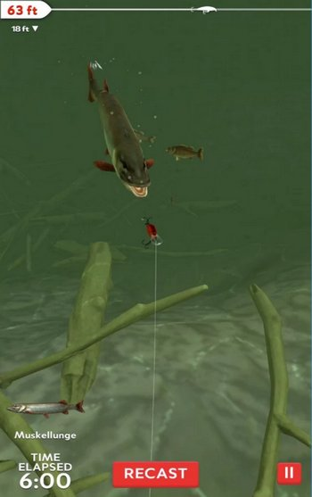 rapala-daily-catch-ios-android-game-catch