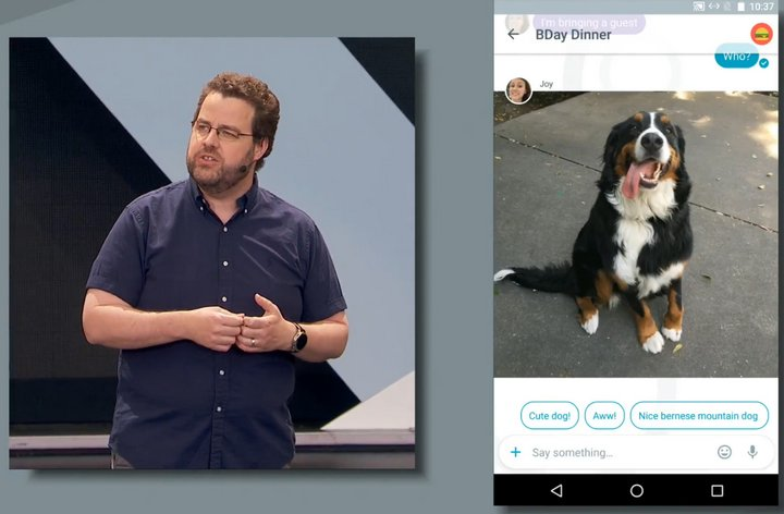 google-allo-cute-dog
