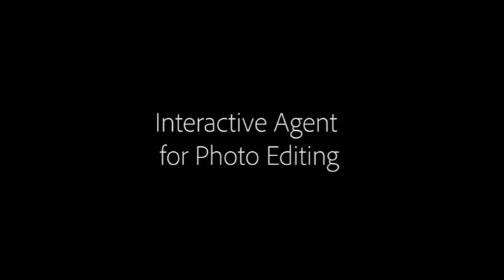 Adobe Systems - Interactive Agent - Asistente Digital