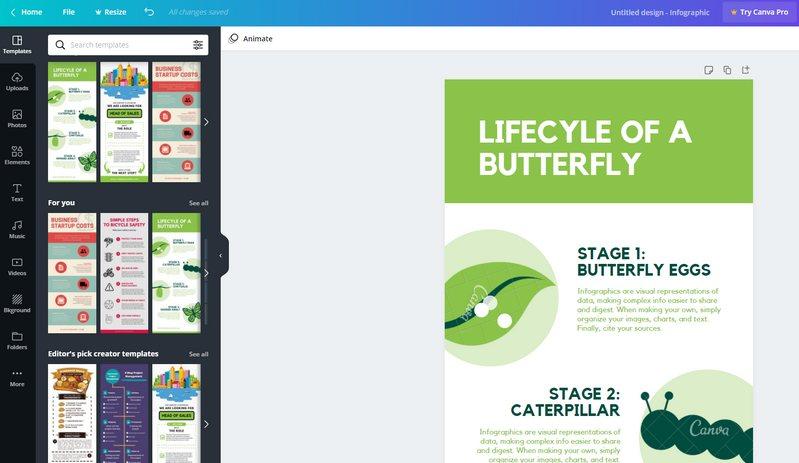 Editor de Infografías - Canva
